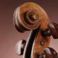 Concorso Internazionale di Violino Franco Gulli               16-21 Marzo 2021